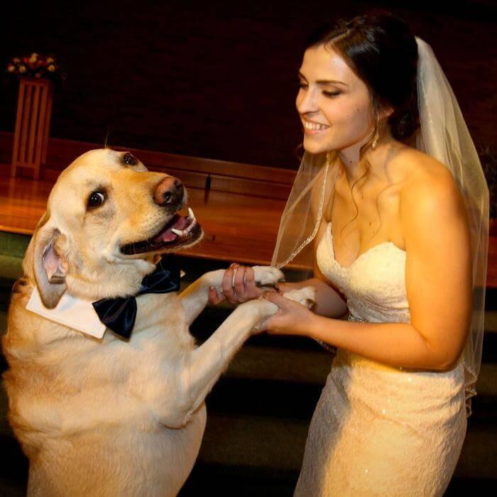 ازدواج با حیوانات