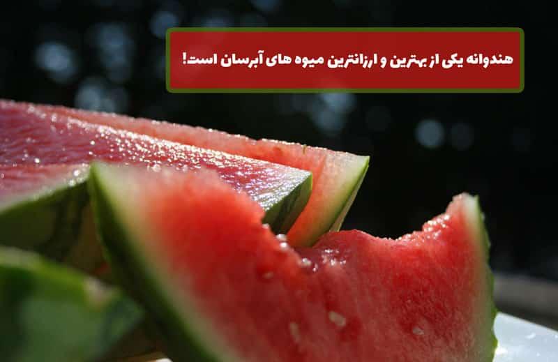 میوه های آبرسان