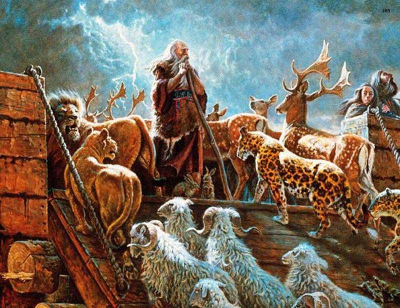 پسر نوح