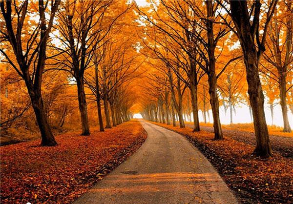 زیباترین پاییزها در جهان