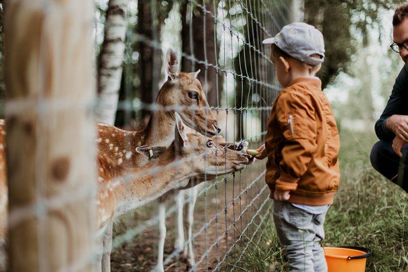 قدیمی ترین باغ وحش جهان